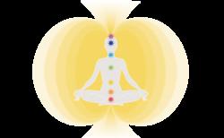 心と体のバランスをつかさどるエネルギーの経路、ナーディ